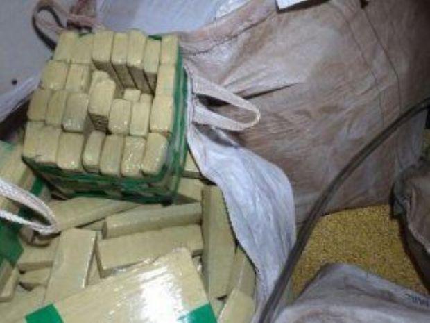 Quase 2 toneladas de maconha é apreendida em carregamento de milho em Aral Moreira
