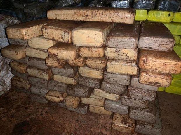 Para despistar, caseiro escondia tabletes de maconha enterrados em chiqueiro em Aral Moreira