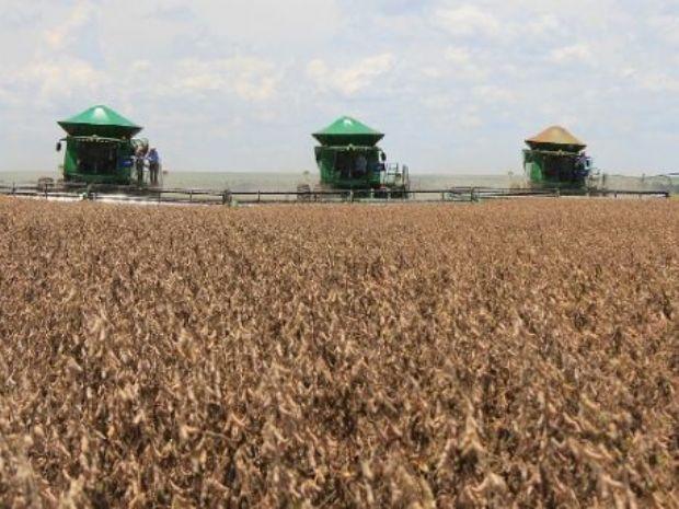 Aral Moreira figura entre as 100 maiores produtoras do agronegócio brasileiro do país
