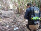 Droga foi encontrada enterrada na vegetação da fazenda.